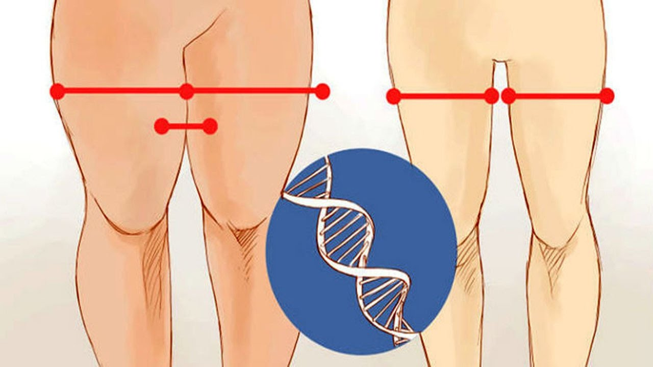 How To Reduce Thigh Fat Exercises That Helps In Reducing Thigh Fat